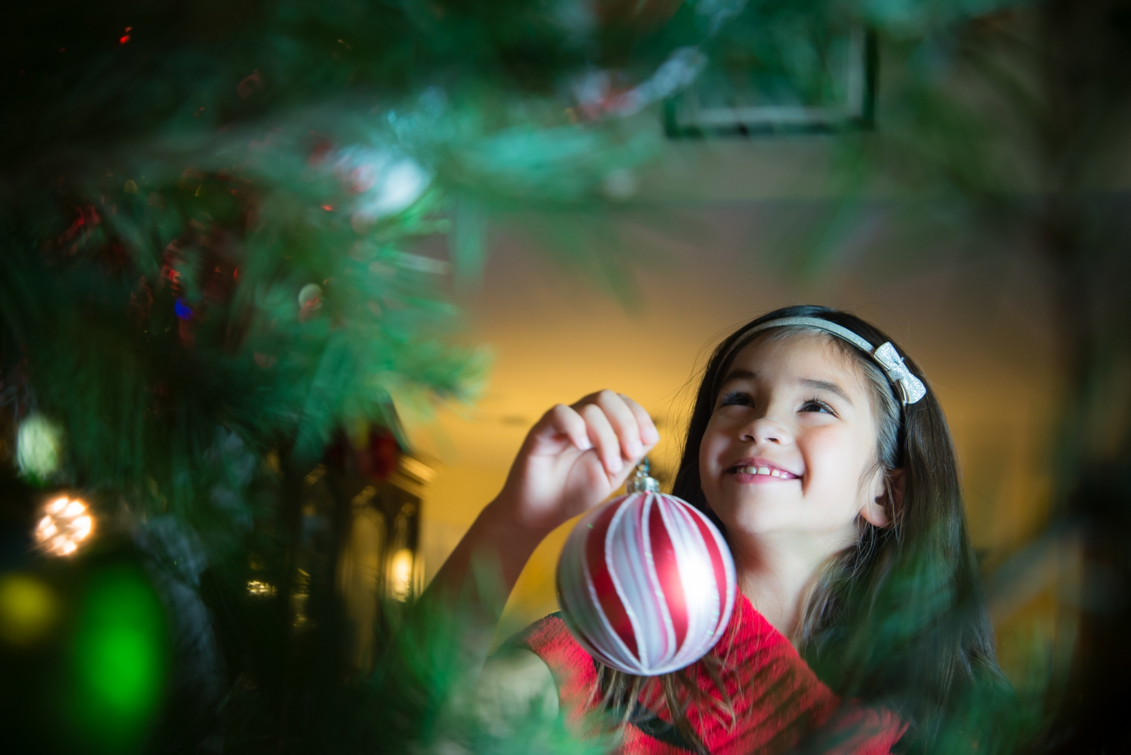 12 days top 10 images photography tradition christmas photography